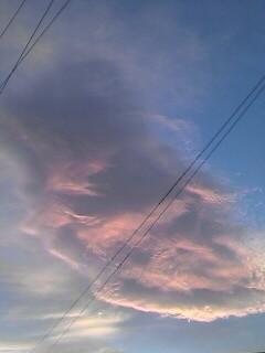 夕方、台風一過の夕焼け(本文と関連はありません)